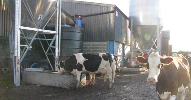 Enduramaxx Agricultural Farm Water Tanks