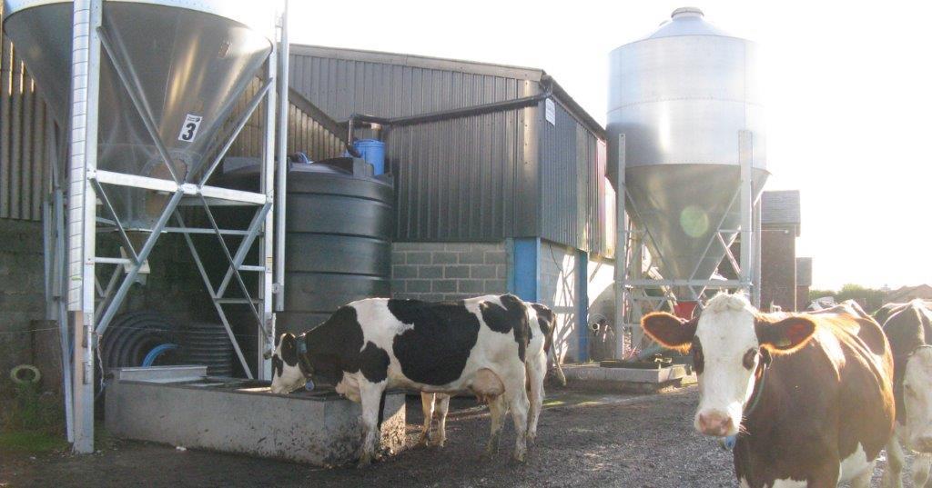 Enduramaxx Rainwater Harvesting for Beef and Sheep Farms