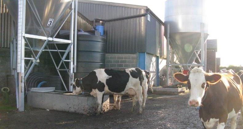 Enduramaxx Rainwater harvesting on the farm – is it right for you