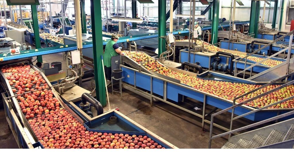 Enduramaxx How is Fruit & Vegetable Processing Wastewater Treated (2)