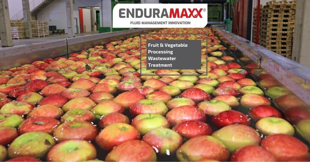 Enduramaxx How is Fruit & Vegetable Processing Wastewater Treated