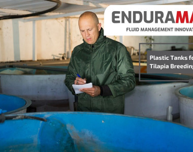 Enduramaxx Plastic Tanks for Tilapia Breeding and Farming
