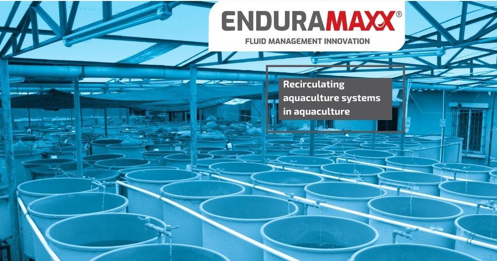Enduramaxx Recirculating aquaculture systems in aquaculture