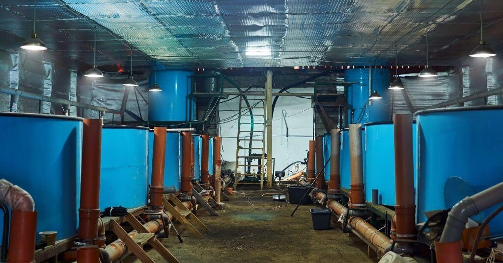 Enduramaxx How are solids removed from aquaculture wastewater
