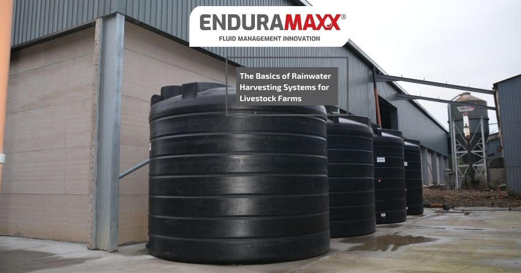 Enduramaxx The Basics of Rainwater Harvesting Systems for Livestock Farms